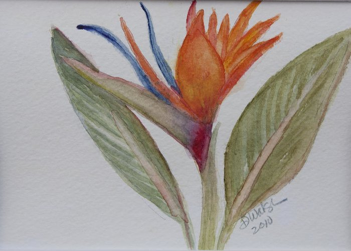 Bird Of Paradise Greeting Card featuring the painting Bird Of Paradise by Donna Walsh