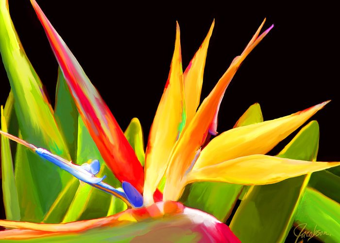 Bird Of Paradise Paintings Greeting Card featuring the painting Bird Of Paradise I Black by Jackie Jacobson