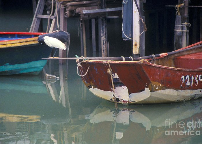 Animal Greeting Card featuring the photograph Bird On Boat Oar - Hong Kong by Gordon Wood