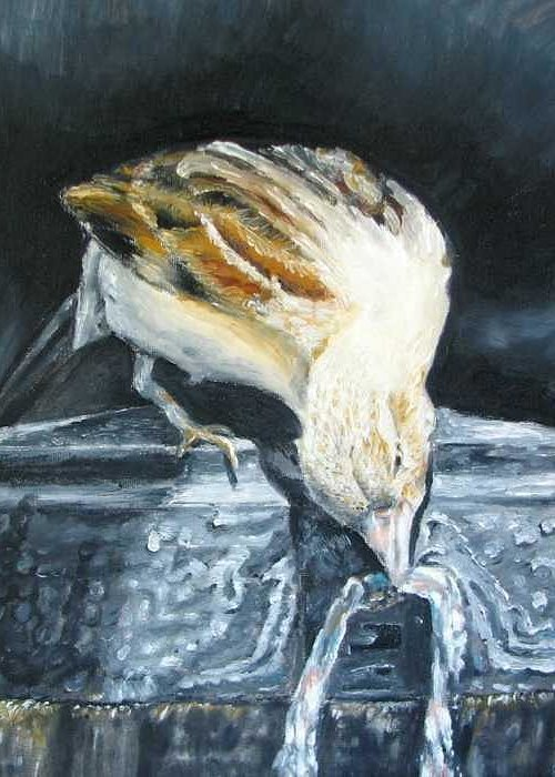 Oil Painting On Canvas Greeting Card featuring the painting Bird Original Oil Painting by Natalja Picugina