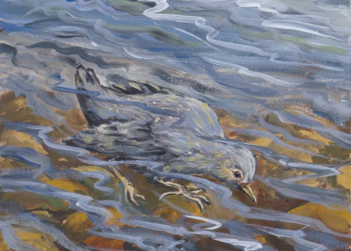 Animal Greeting Card featuring the painting Bird Underwater by Dawn Senior-Trask