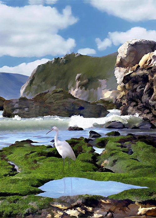 Ocean Greeting Card featuring the photograph Bird's Eye View by Kurt Van Wagner
