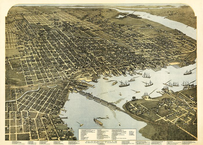 Birds Greeting Card featuring the digital art Birds Eye View Of Jacksonville Florida 1893 by Bill Cannon