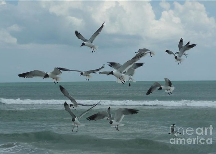 Birds Greeting Card featuring the photograph Birds In Flight by Barb Montanye Meseroll