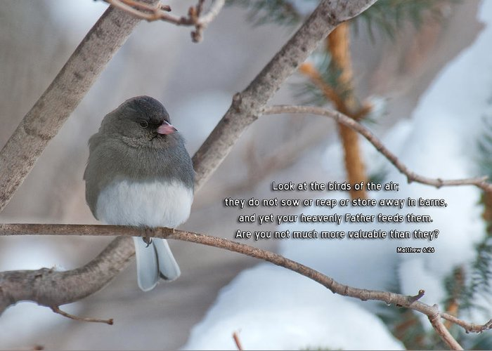 Bird Greeting Card featuring the photograph Birds Of The Air by David Arment