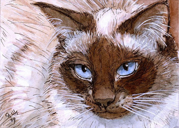 Birman Greeting Card featuring the painting Birman Cat - Blue Eyes. by Svetlana Ledneva-Schukina