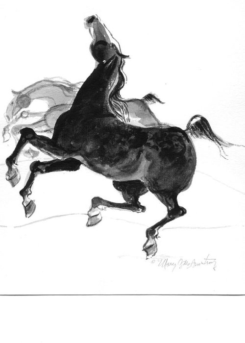 Mary Ogden Armstrong Greeting Card featuring the drawing Black And Gray by Mary Armstrong