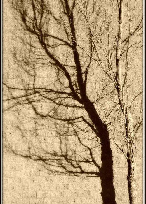 Tree Greeting Card featuring the photograph Black Autumn by Jon Benson