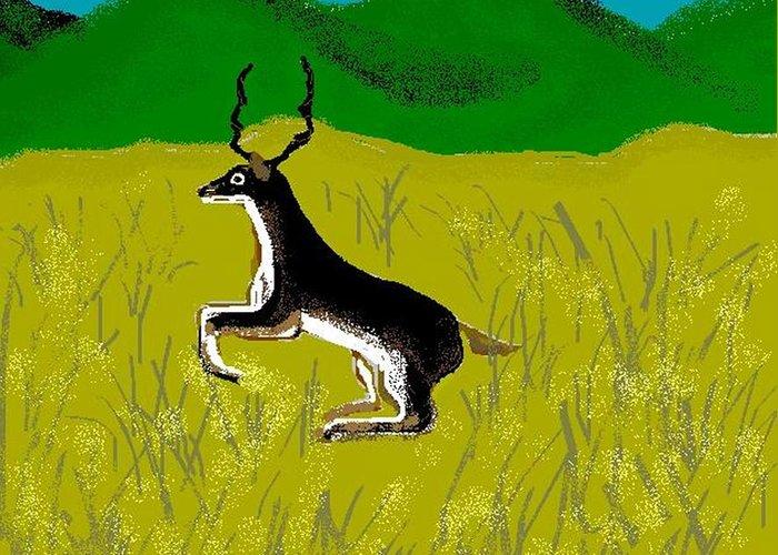 Deer Greeting Card featuring the digital art Black Buck by Carole Boyd