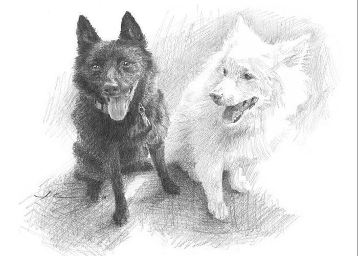Www.miketheuer.com Black Dog White Dog Drawing Greeting Card featuring the drawing Black Dog White Dog Drawing by Mike Theuer