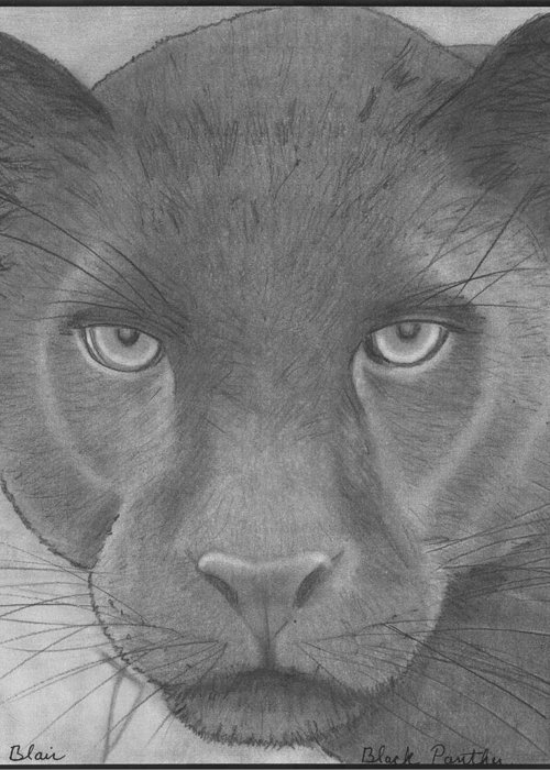 Wildlife Greeting Card featuring the drawing black Panther by Eileen Blair