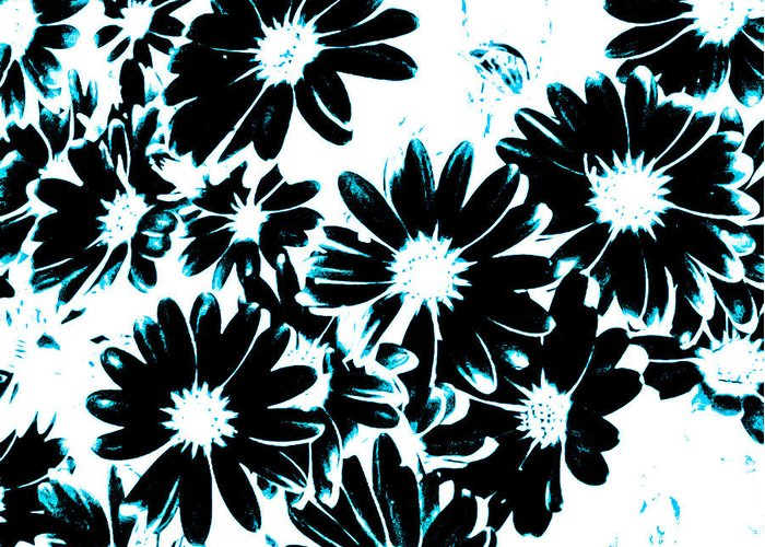 Teal Greeting Card featuring the photograph Black Petals With Sprinkles Of Teal Turquoise by Heather Joyce Morrill