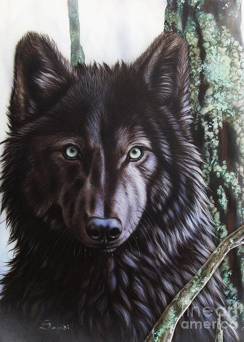 Wolves Greeting Card featuring the painting Black Wolf by Sandi Baker