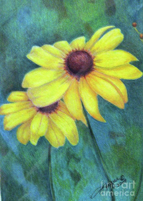 Fuqua - Artwork Greeting Card featuring the drawing Blackeyed Susan by Beverly Fuqua