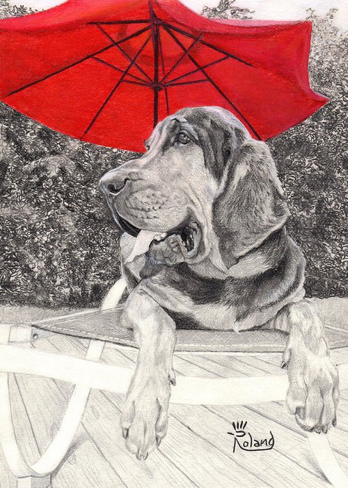 Dog Under Chair Drawings Greeting Cards