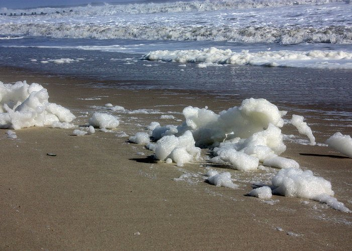Seafoam Greeting Card featuring the photograph Blowing Seafoam by Mary Haber