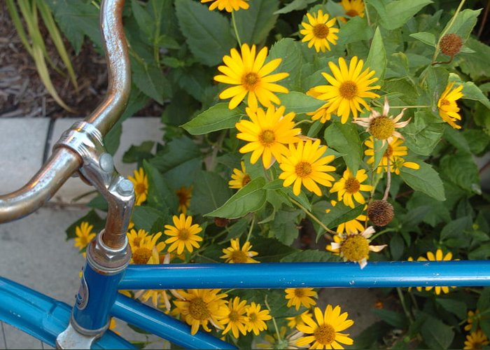 Bike Greeting Card featuring the photograph Blue Bike by Jon Benson