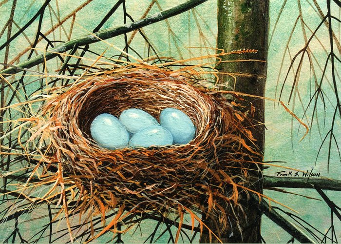 Wildlife Greeting Card featuring the painting Blue Eggs In Nest by Frank Wilson