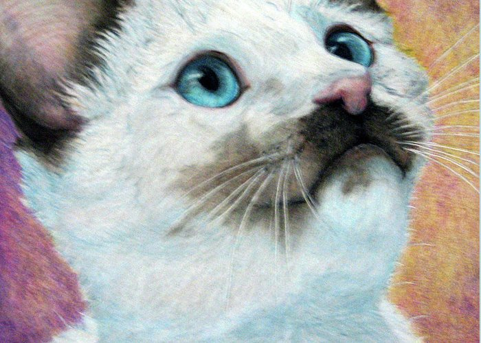Cats Greeting Card featuring the drawing Blue Eyed Prayer by Beverly Fuqua