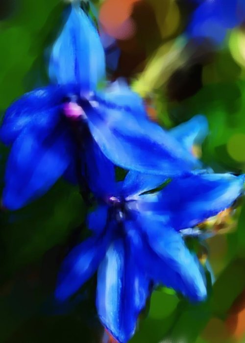 Digital Photograph Greeting Card featuring the photograph Blue Flower 10-30-09 by David Lane