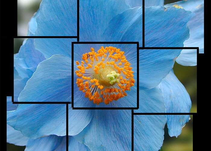 Blue Greeting Card featuring the sculpture Blue Flower Photo Sculpture Butchart Gardens Victoria Bc Canada by Michael Bessler