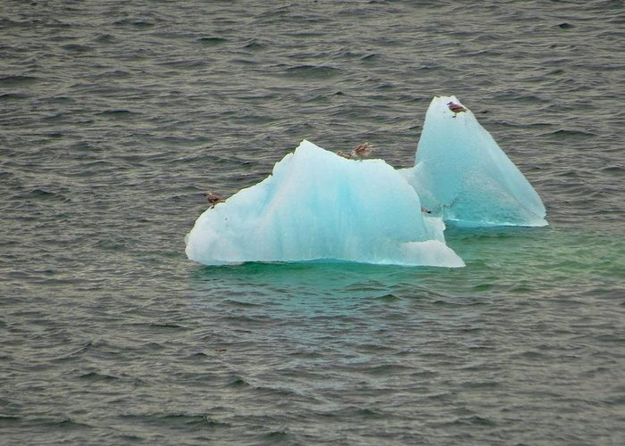 Greeting Card featuring the photograph Blue Ice by Bill Jordan