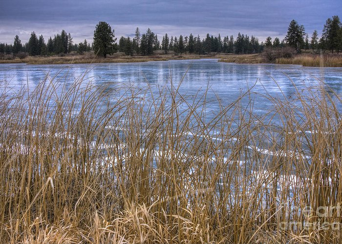 Turnbull Greeting Card featuring the photograph Blue Ice by Idaho Scenic Images Linda Lantzy