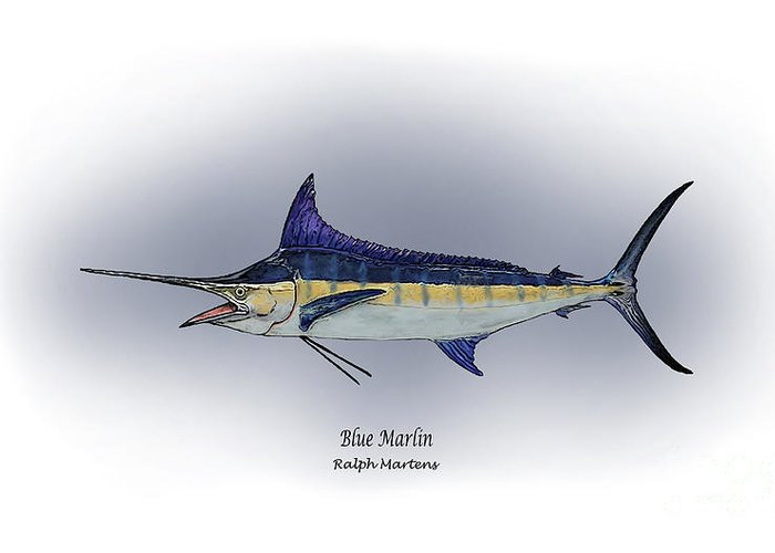 Blue Marlin Greeting Card featuring the painting Blue Marlin by Ralph Martens