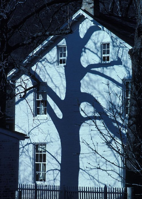 Tree Greeting Card featuring the photograph Blue Tree House by Carl Purcell