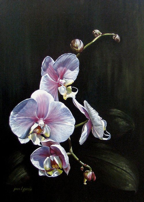 Orchid Greeting Card featuring the painting Blushing by Joan Garcia
