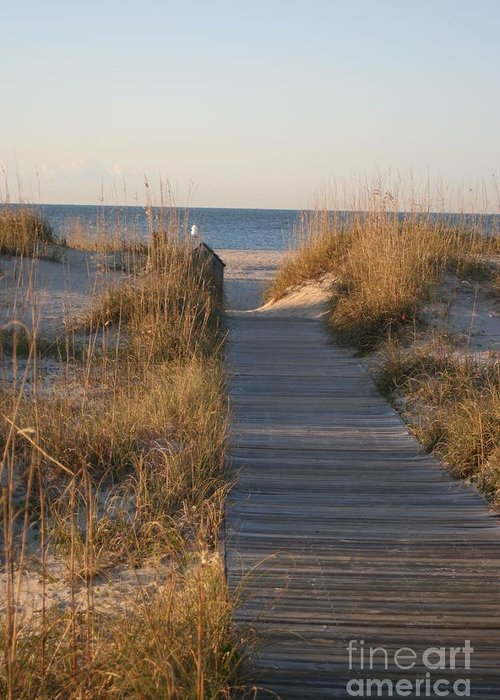 Boardwalk Greeting Card featuring the photograph Boardwalk to the Beach by Nadine Rippelmeyer