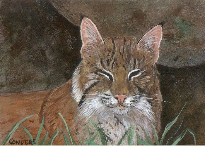 Cat Greeting Card featuring the painting Bob Cat by Peggy Conyers
