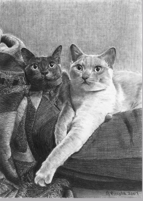 Cats Greeting Card featuring the drawing Bogey And Bacall by Marlene Piccolin