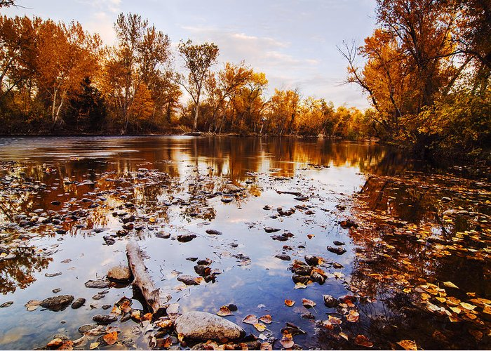 Boise River Greeting Card featuring the photograph Boise River Autumn Glory by Vishwanath Bhat
