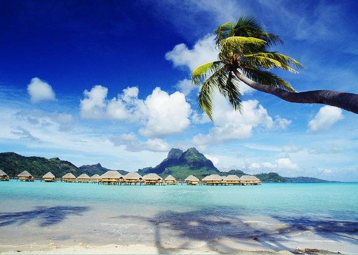 Afternoon Greeting Card featuring the photograph Bora Bora, Lagoon Resort by Himani - Printscapes