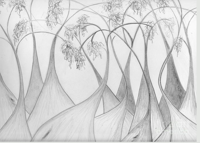 Karri Greeting Card featuring the drawing Boranup Forest by Leonie Higgins Noone