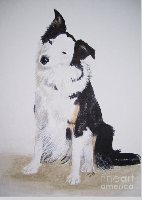 Dog Portrait Greeting Card featuring the painting Border Collie - Birch by Janice M Booth