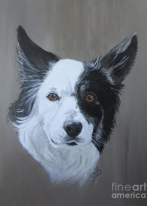 Border Collie Greeting Card featuring the painting Border Collie - Teak by Janice M Booth