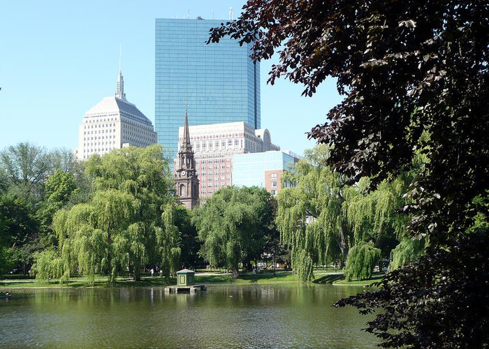 Garden Greeting Card featuring the photograph Boston Public Garden by Kathy Schumann