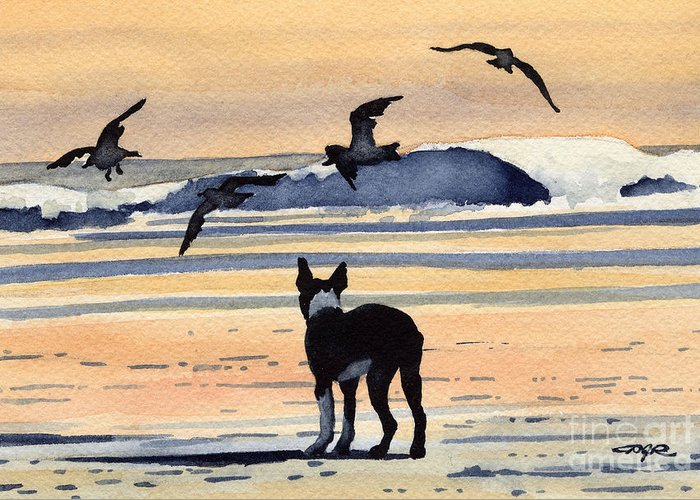 Boston Greeting Card featuring the painting Boston Terrier Sunset by David Rogers