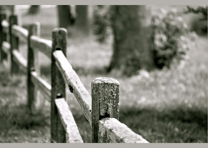 Fence Greeting Card featuring the photograph Boundaries by Lauren Medina