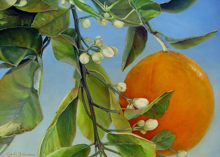 Floral Painting Greeting Card featuring the painting Boutons d Oranges by Muriel Dolemieux