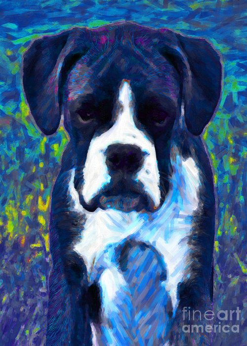 Animal Greeting Card featuring the photograph Boxer 20130126v5 by Wingsdomain Art and Photography