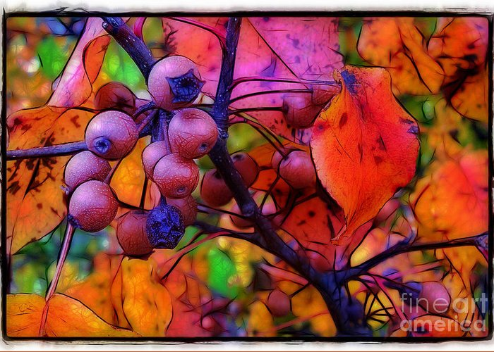 Bradford Greeting Card featuring the photograph Bradford Pear In Autumn by Judi Bagwell