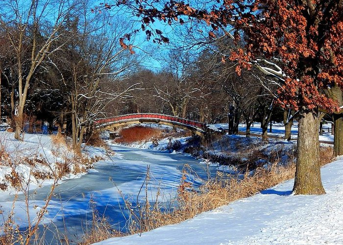 Park Greeting Card featuring the photograph Bradley Bridge in January by Helen ONeal