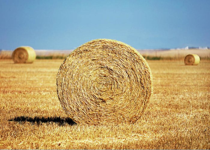 Round Bales Greeting Card featuring the photograph Brady Bales by Todd Klassy