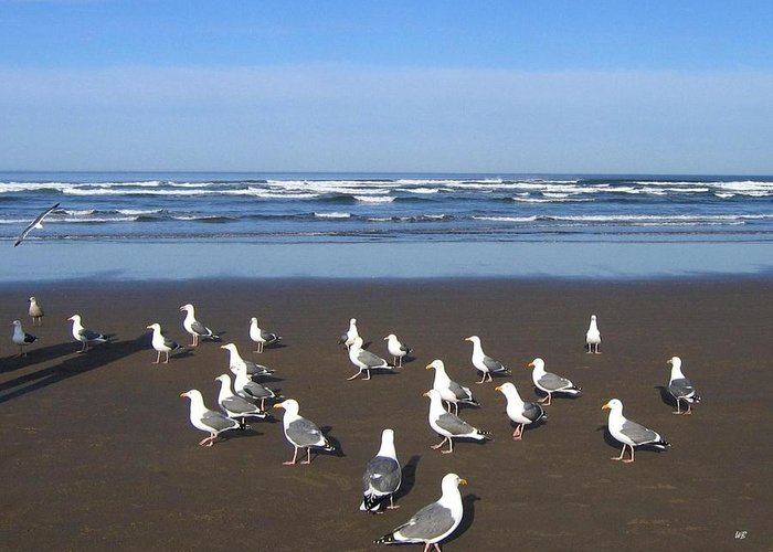Cannon Beach Greeting Card featuring the photograph Breakfast At Cannon Beach by Will Borden