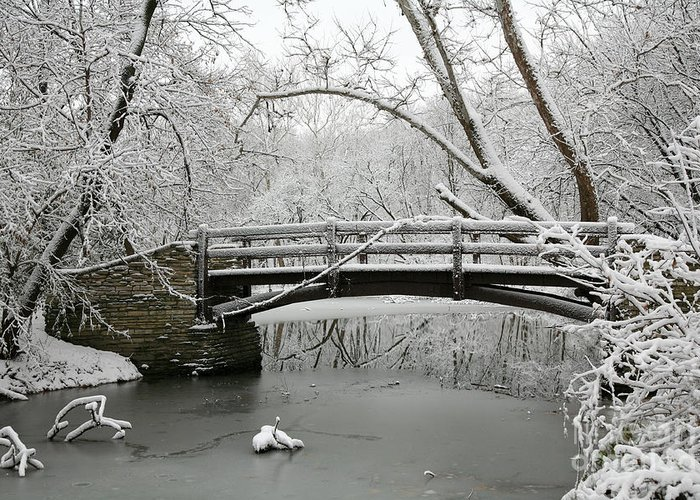 Bridge Greeting Card featuring the photograph Bridge In Winter by Timothy Johnson