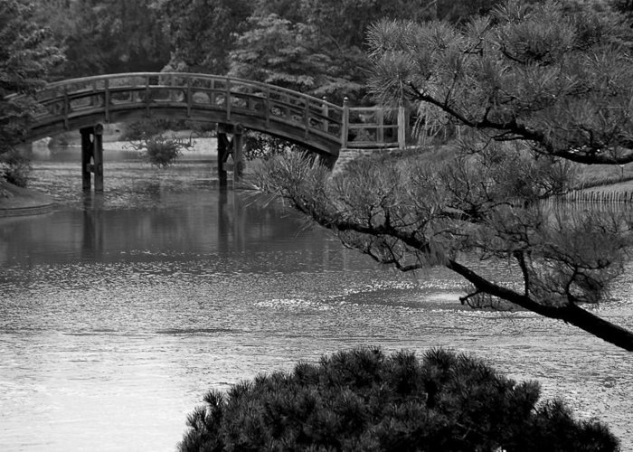 Bridge Black White Greeting Card featuring the photograph Bridge by Kevin Mitts