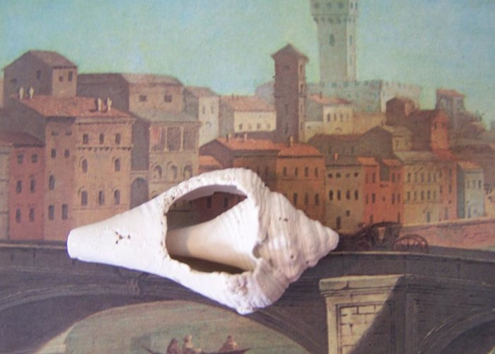 Shells Greeting Card featuring the sculpture Bridge Over Florence by Geraldine Liquidano